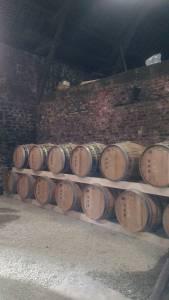 Wooden Barrels ageing calavados